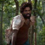 Pushpa Upcoming Movie